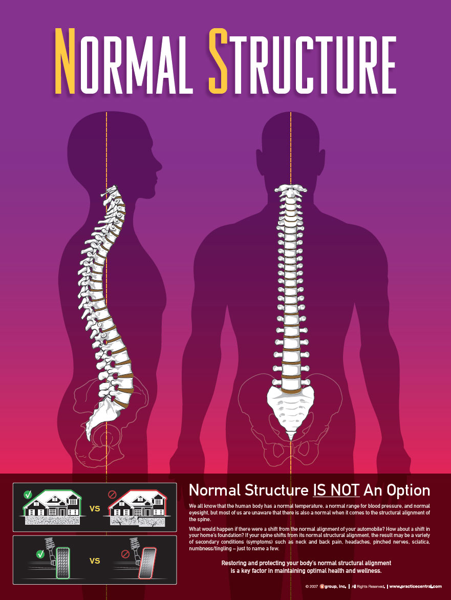 Normal Structure Spine Chiropractic Optimal Function